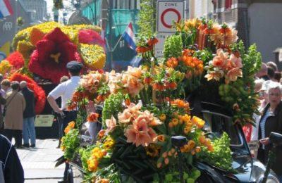 Desfiles florales Amsterdam