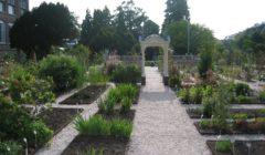 Jardin Botanico Amsterdam